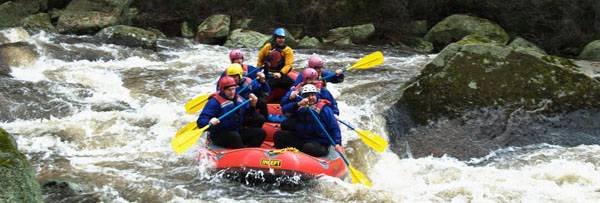 Mitta Mitta River White Water Rafting